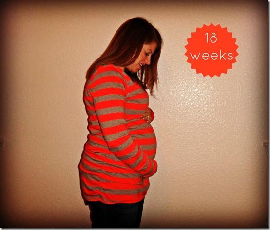 18 weeks belly