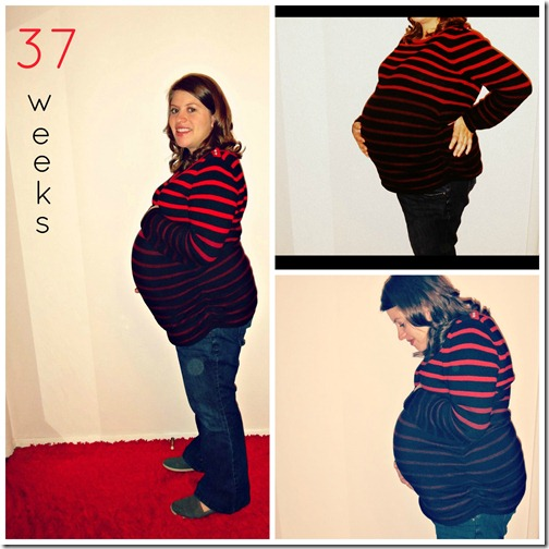 37 week collage